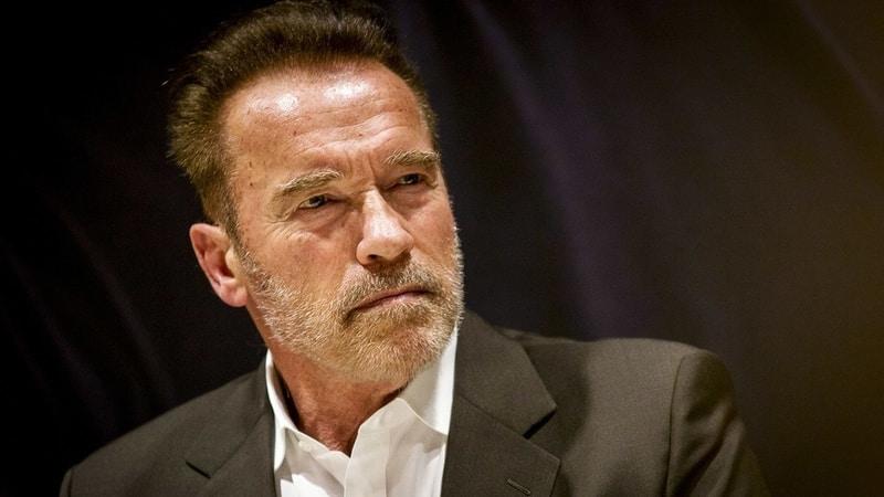 Arnold Schwarzenegger ( Superstar Hollywood Actors)