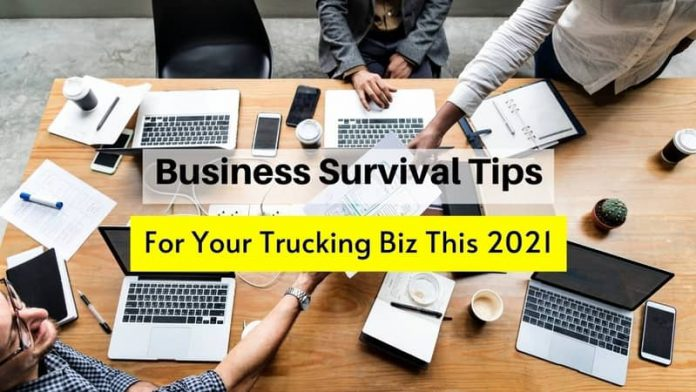 Business Survival Tips