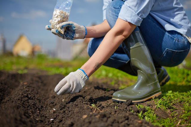 Garden Fertilizer